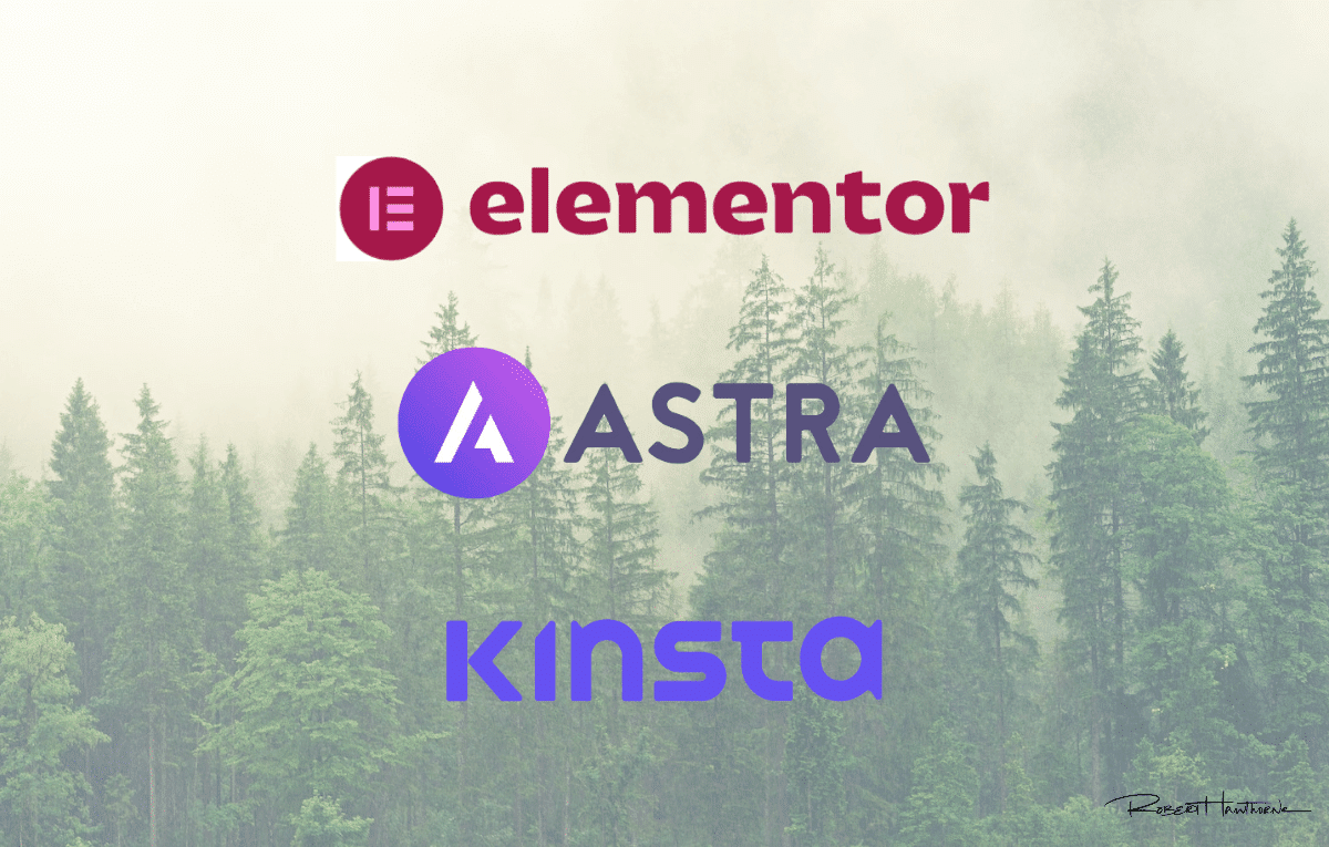I use Elementor, Astra, and Kinsta for my websites.